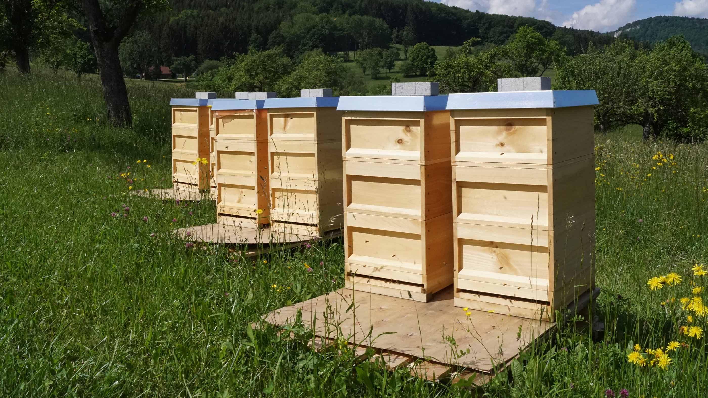 Die sechs Bienenstöcke von mey sind paarweise auf der Wiese in Lautlingen, Deutschland aufgereiht | mey®