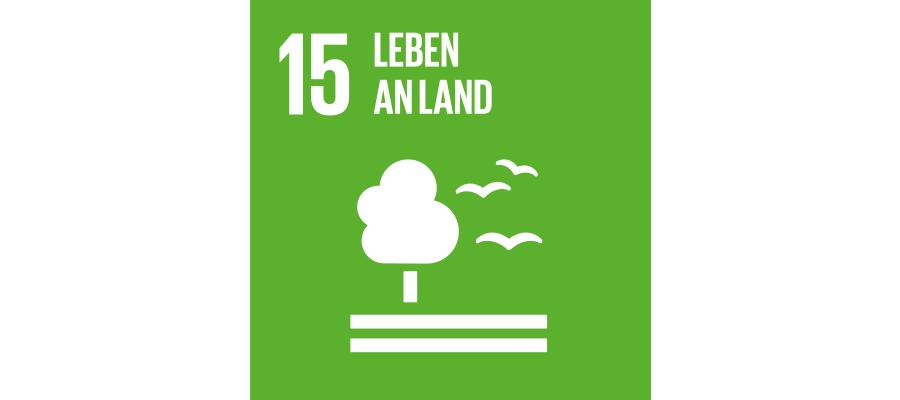 Icon SDG Nr. 15 Leben an Land | mey®