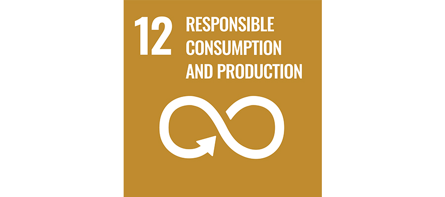 SDG No 12 responsible consumption and production   mey®